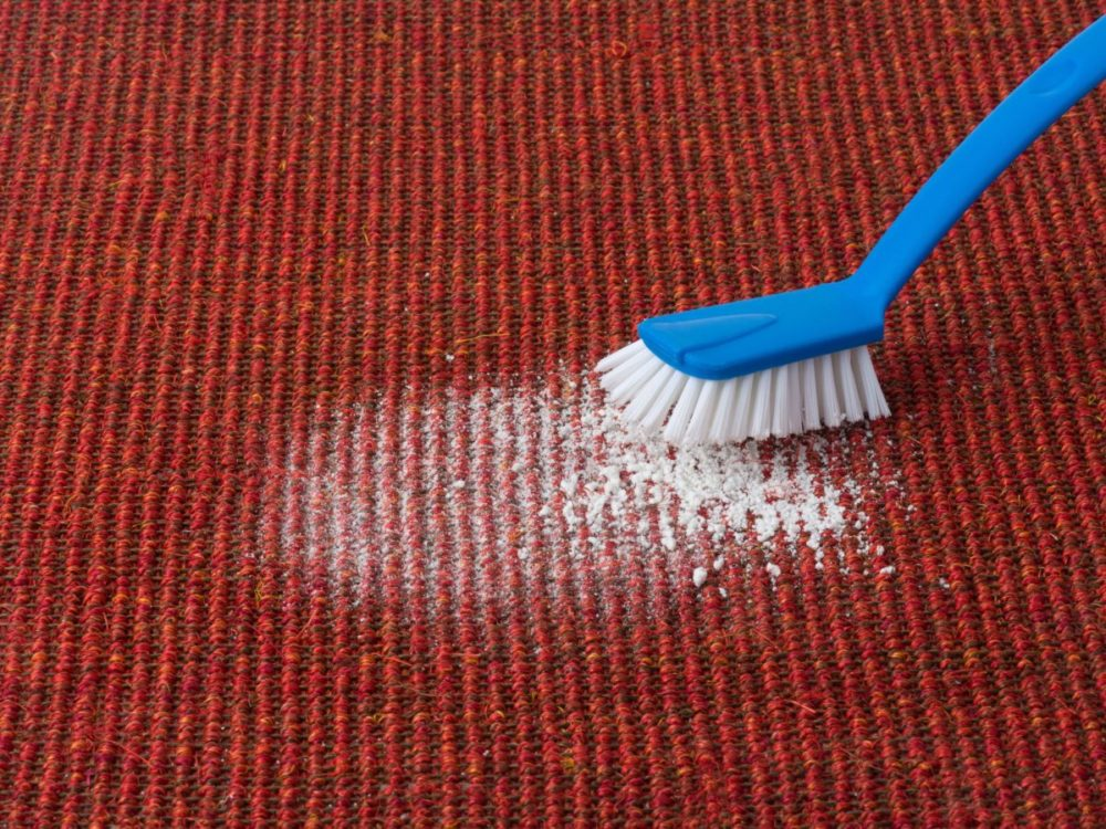 cleaning carpet with enzymes