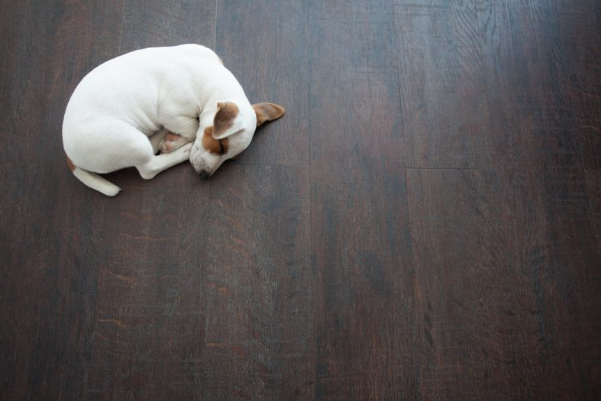 pet friendly flooring pros and cons
