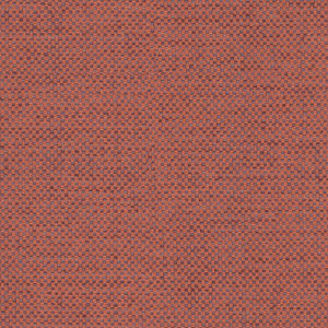 Coral   21554