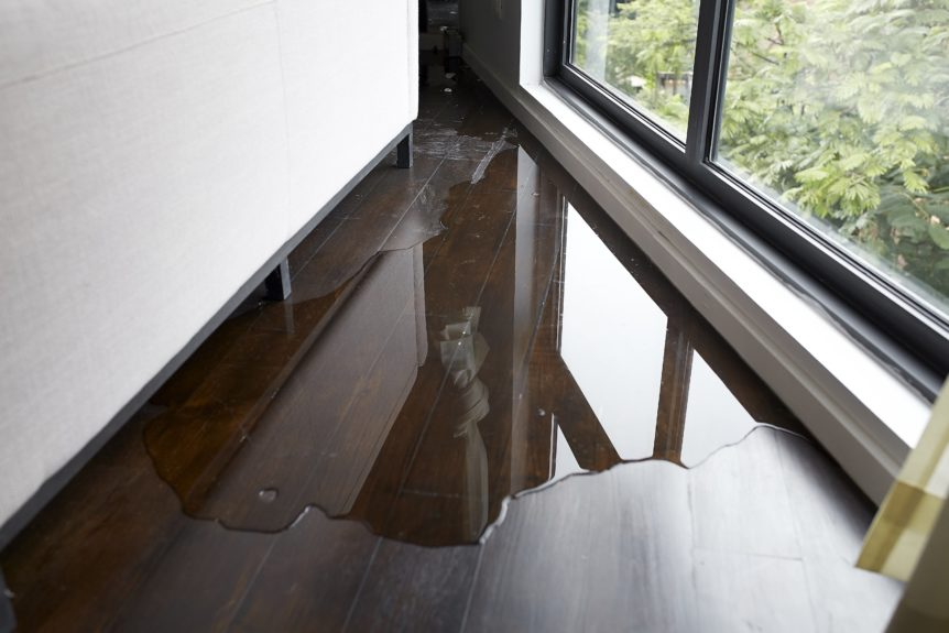 water damage on wood floor